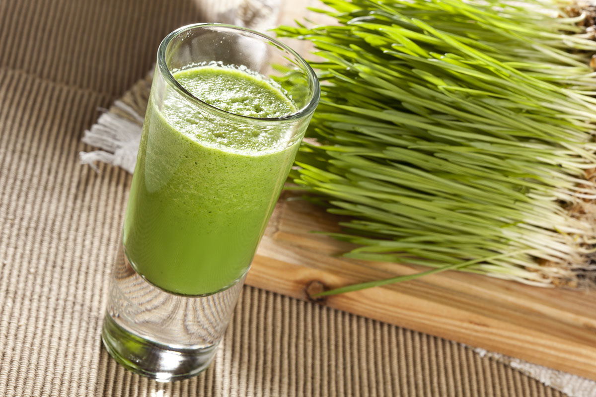 Green Organic Wheat Grass S