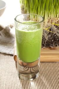 Green Organic Wheat Grass Shot ready to drink